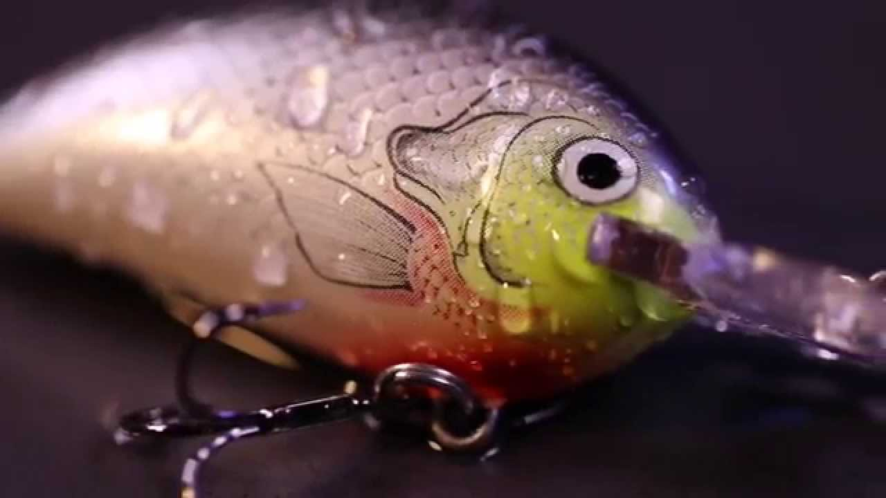 Bagley Bait Fishing Lures - Sunny B